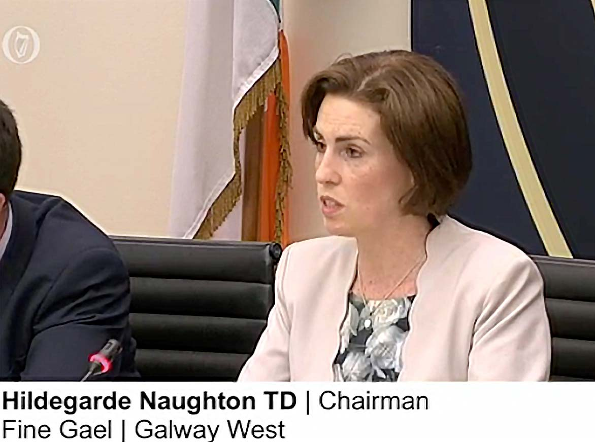 WEB PHOTO CHAIRPERSON COMMUNICATIONS CLIMATE CHANGE NATURAL RESOURCES - Rural Ireland Eircode and Broadband